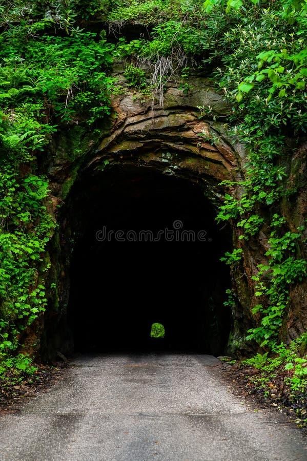 Région géologique de gorge de Nada Tunnel - de la rivière rouge - les Appalaches - Kentucky images stock