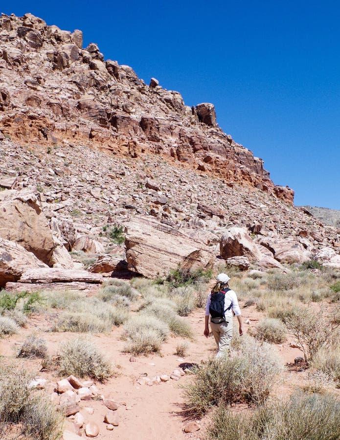Région rouge de conservation de canyon de roche, Nevada, Etats-Unis image stock