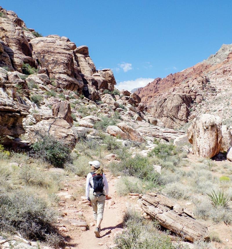 Région rouge de conservation de canyon de roche, Nevada, Etats-Unis photos libres de droits
