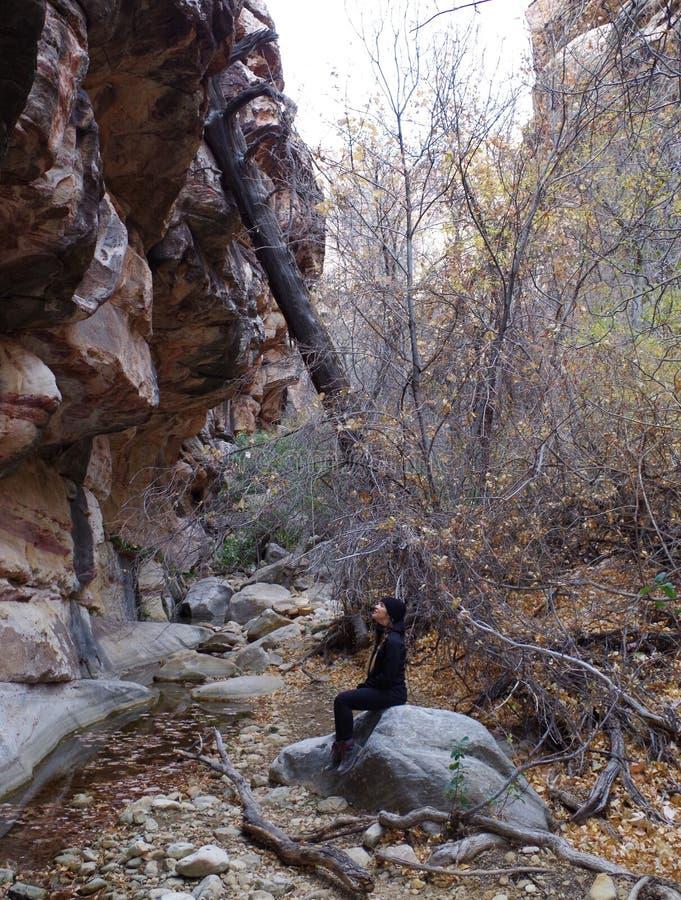 Région rouge de conservation de roche, Nevada du sud, Etats-Unis images stock