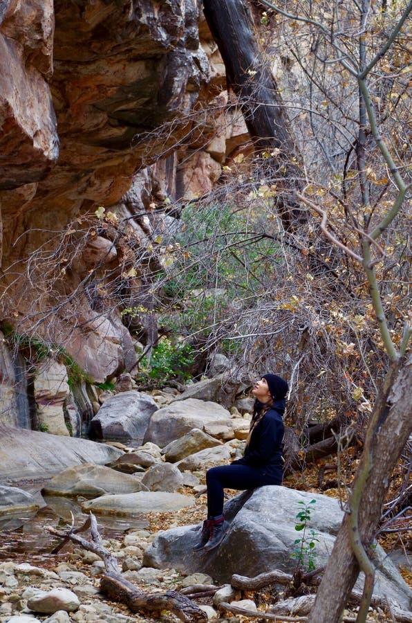 Région rouge de conservation de roche, Nevada du sud, Etats-Unis photos libres de droits