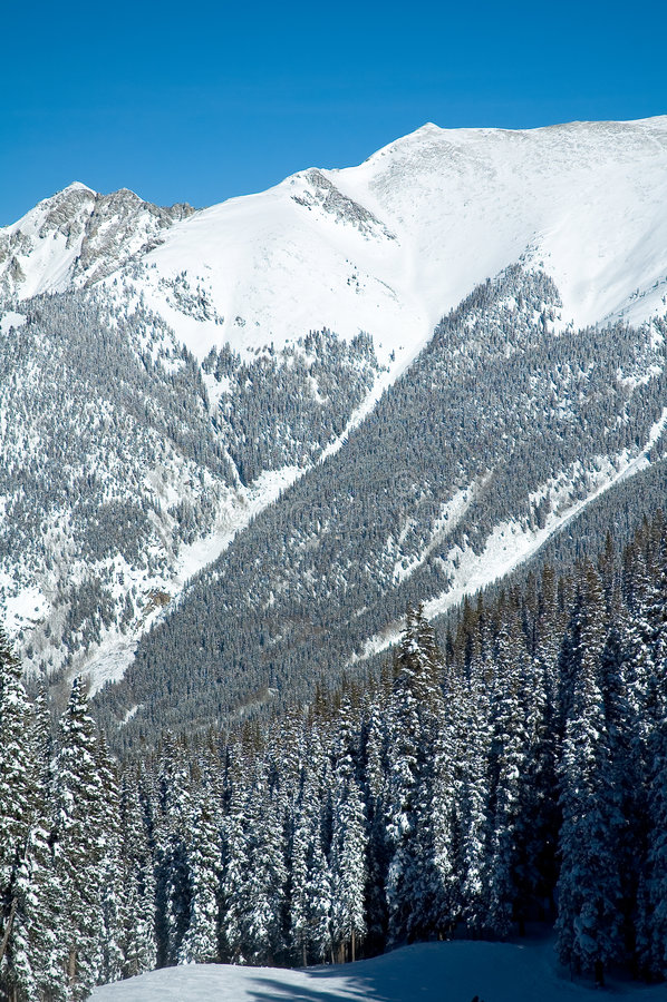 Région sauvage du Colorado photos stock