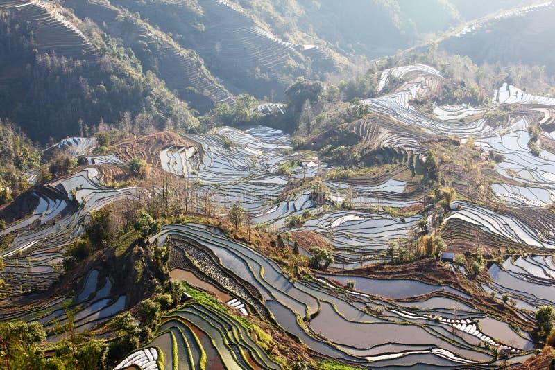 Région scénique de champ en terrasse de Laohuzui image stock