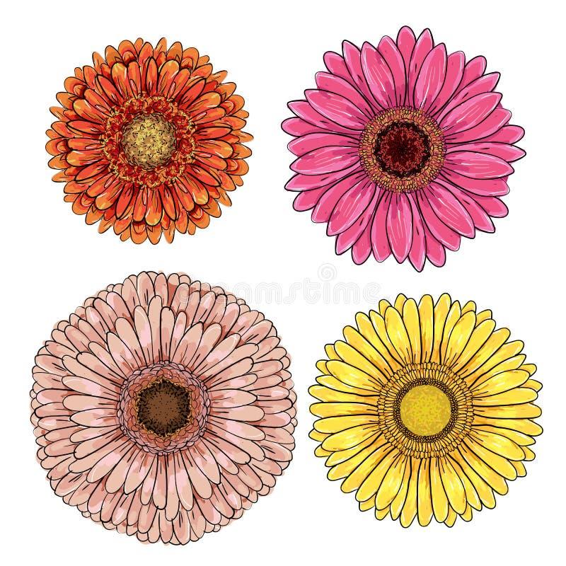Réglé de l'orange 4, gerberas jaunes, roses, magenta d'isolement sur le fond blanc pour des cartes de voeux, invitations de maria illustration libre de droits
