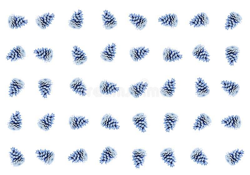 Répétition bleue de cèdre de sapin de cône de beaucoup de fruits dans un emplacement chaotique images libres de droits