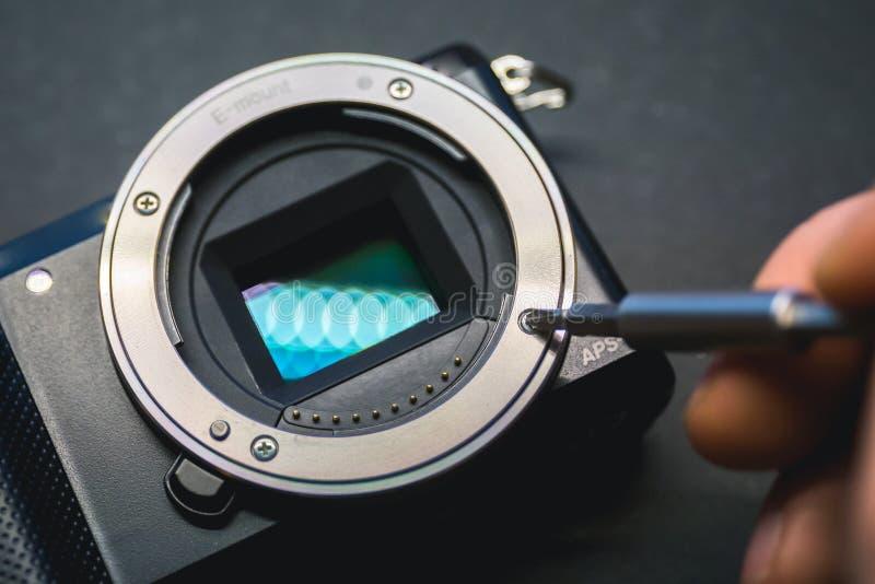 Réparation de capteur de caméra de Mirrorless, screwdriwer au-dessus de bâti de lentille photo libre de droits