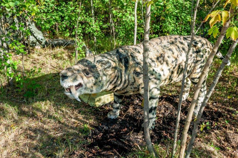 Réplica sem redução realística de um tigre sabre-dentado pré-histórico imagens de stock royalty free