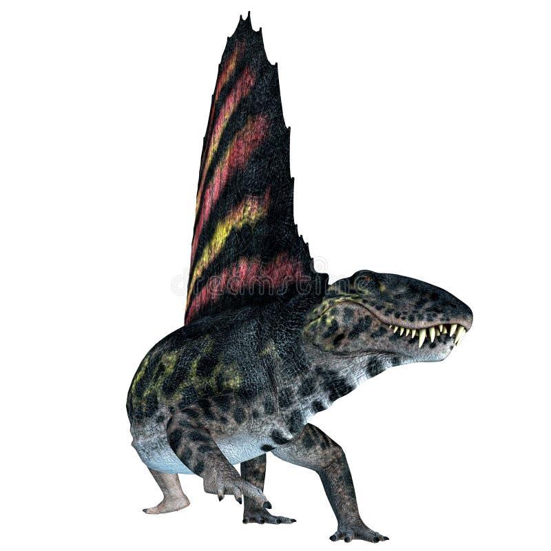 Réptil de Dimetrodon no branco ilustração royalty free