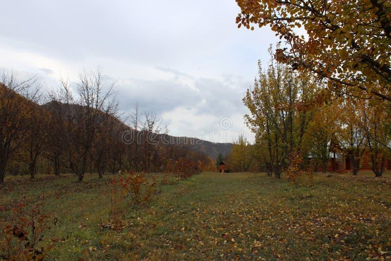 République d'Altai image stock