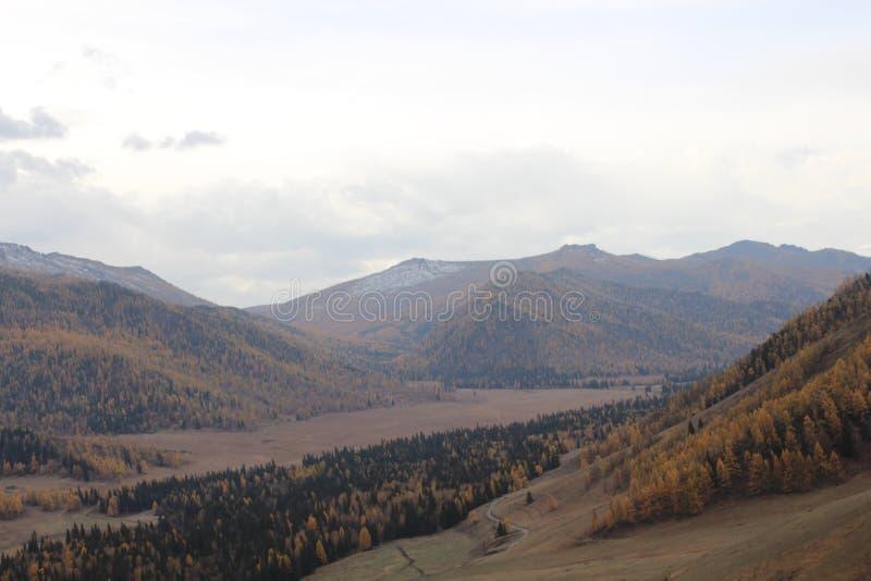 République d'Altai photo libre de droits