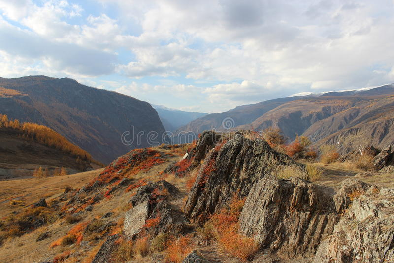 République d'Altai image libre de droits
