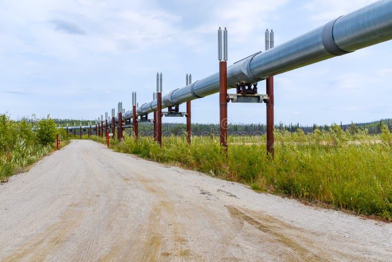 Réseau de pipe-lines du Transport-Alaska dans la région sauvage d'Alaska image libre de droits