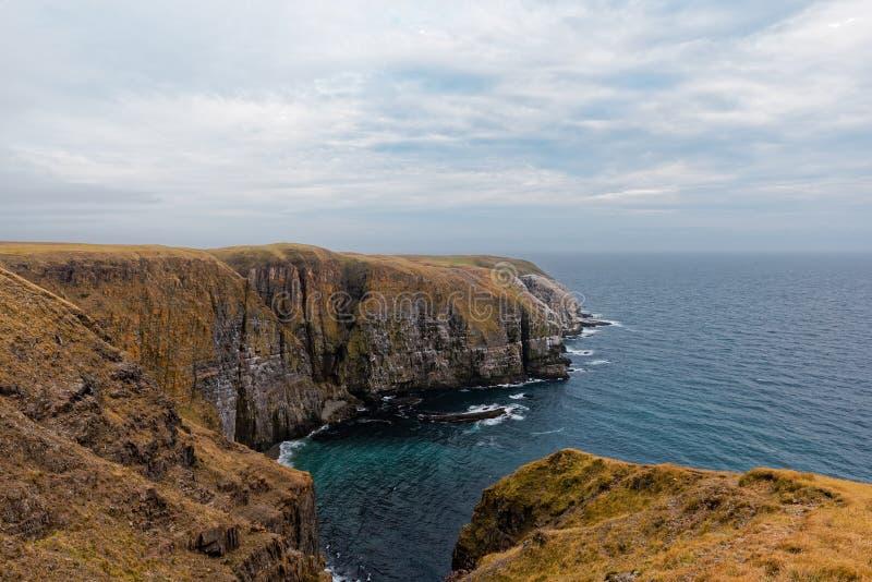 Réservation écologique du ` s de St Mary de cap, Terre-Neuve photos libres de droits