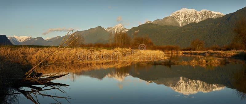 Réserve écologique de Polder de Pitt photographie stock libre de droits