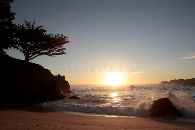 Réserve d'état de Lobos de point, la Californie image libre de droits