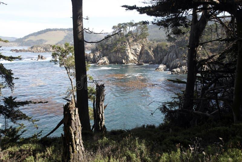 Réserve d'état de Lobos de point, la Californie photos stock