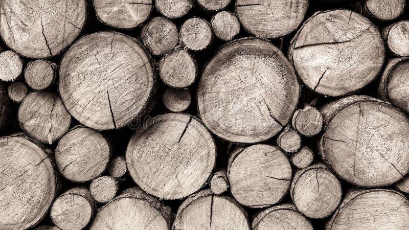 Réserve des rondins en bois sciés en gros plan photos libres de droits
