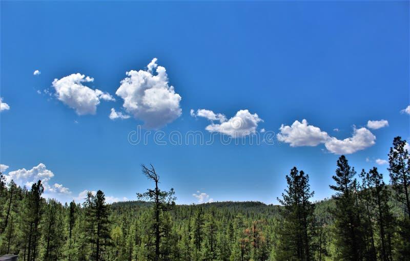Réserve forestière de Tonto, Arizona U S Ministère de l'agriculture, Etats-Unis photo stock