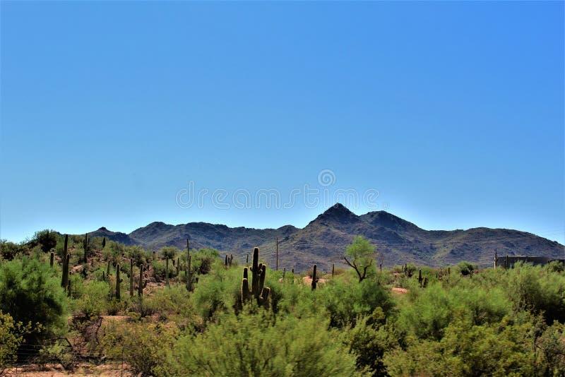 Réserve forestière de Tonto, outre de la route 87, l'Arizona U S Ministère de l'agriculture, Etats-Unis photo stock