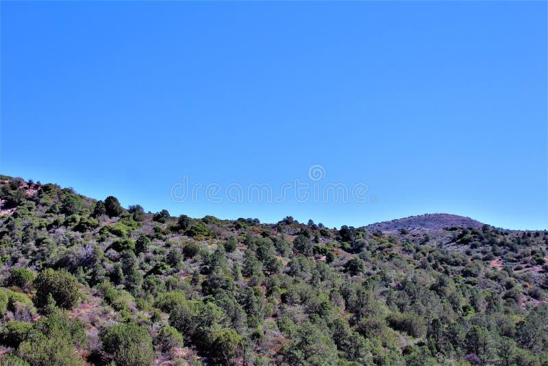 Réserve forestière de Tonto, outre de la route 87, l'Arizona U S Ministère de l'agriculture, Etats-Unis image stock