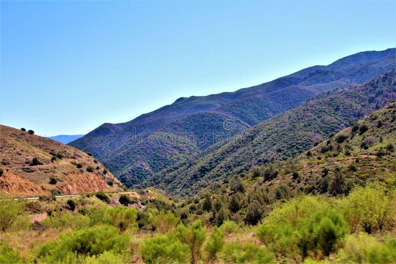 Réserve forestière de Tonto, outre de la route 87, l'Arizona U S Ministère de l'agriculture, Etats-Unis images libres de droits