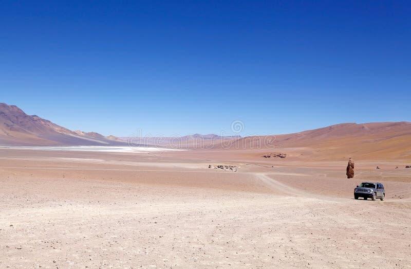 Réserve nationale de flamenco de visibilité directe, Chili photos libres de droits