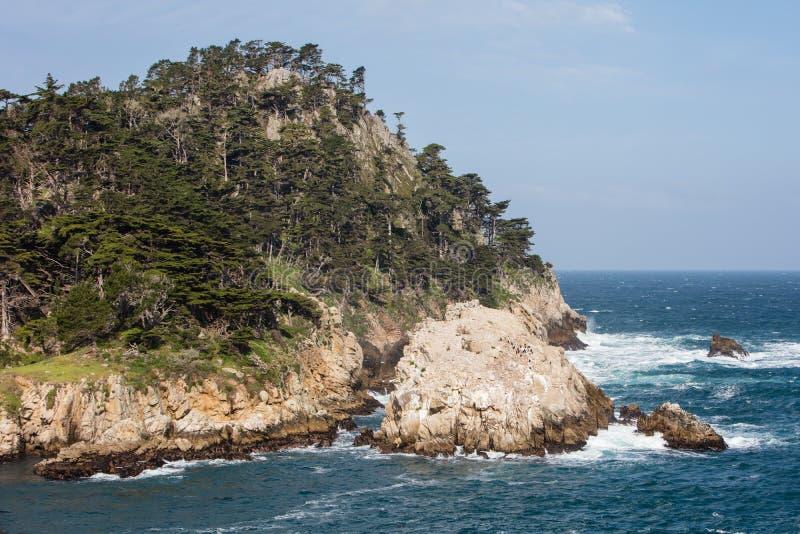 Réserve naturelle d'état de Lobos de point image libre de droits