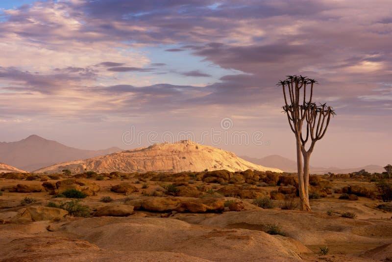 Réserve naturelle de Naukluft, désert de Namib, Namibie photographie stock libre de droits
