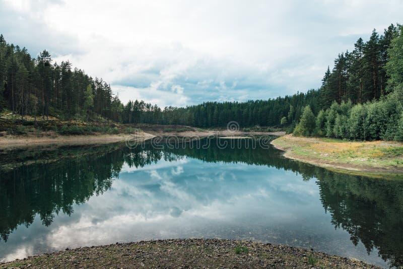 Réserve naturelle suédoise verte du Tarn photo stock