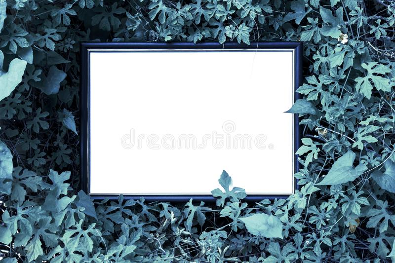 Réserver la carte blanche en papier sur les feuilles vertes Disposition créative avec concept nature photographie stock