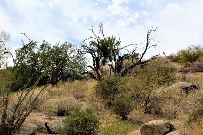 Réservoir de Bartlett Lake, le comté de Maricopa, état vue scénique de paysage d'Arizona, Etats-Unis images stock