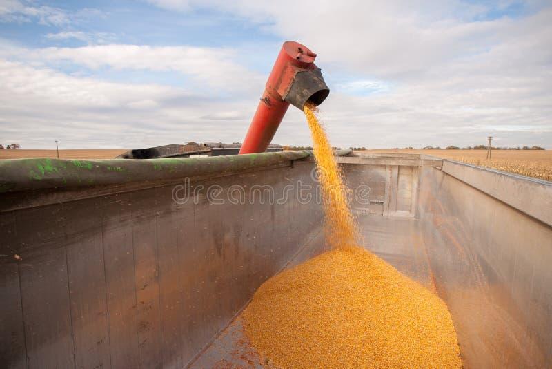 Réservoir de maïs photos stock