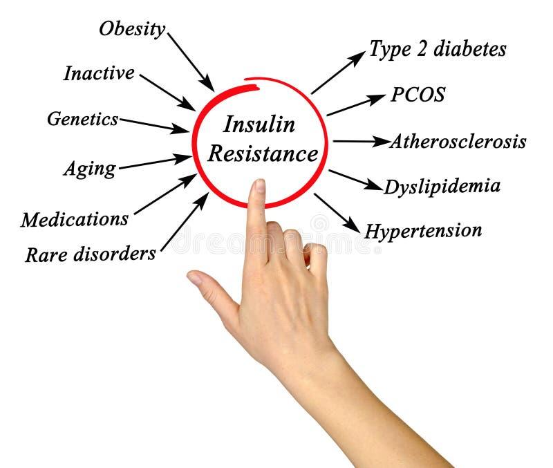 Résistance à l'insuline photos libres de droits