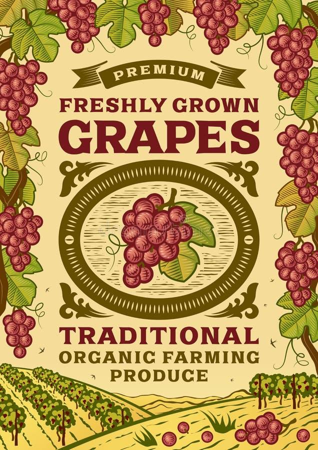 Rétro affiche de raisins illustration de vecteur
