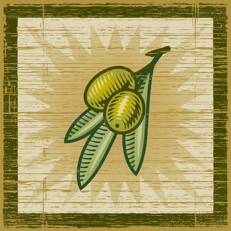 Rétro branche d'olivier illustration stock