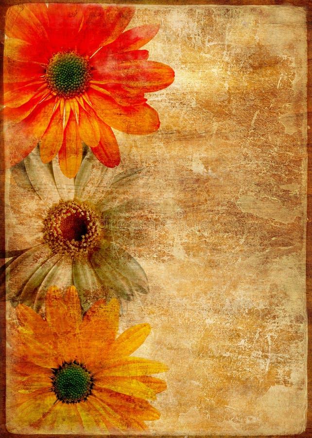 Rétro carte florale illustration libre de droits