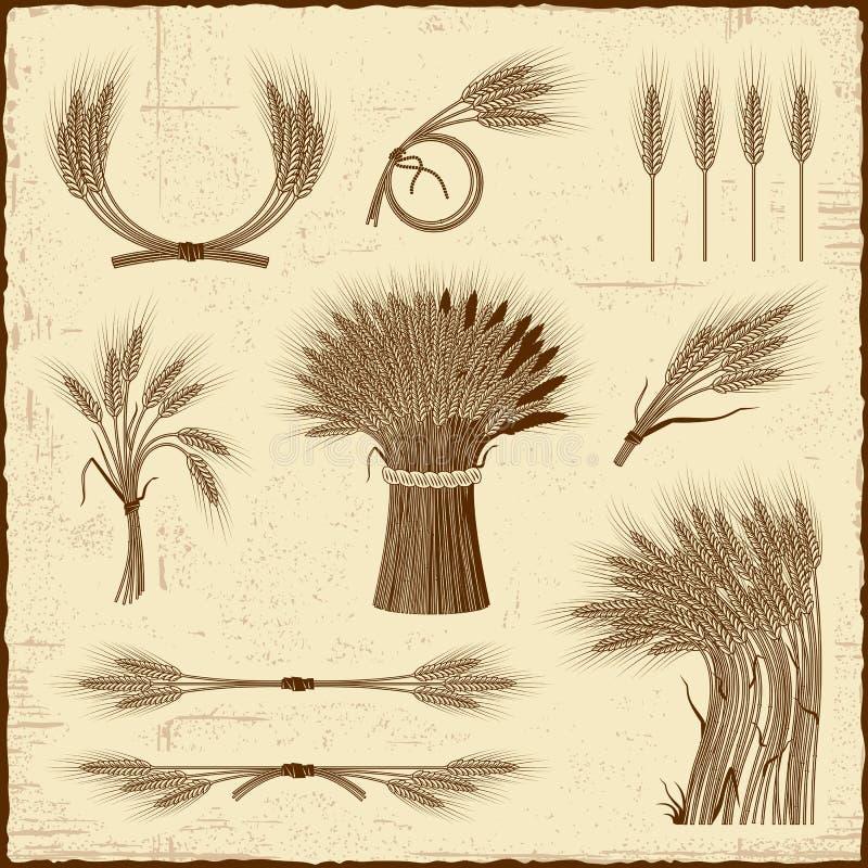 Rétro collection de céréale illustration stock