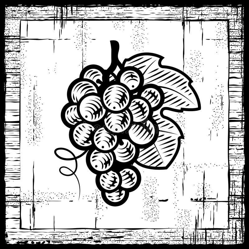 Rétro groupe de raisins noir et blanc illustration libre de droits