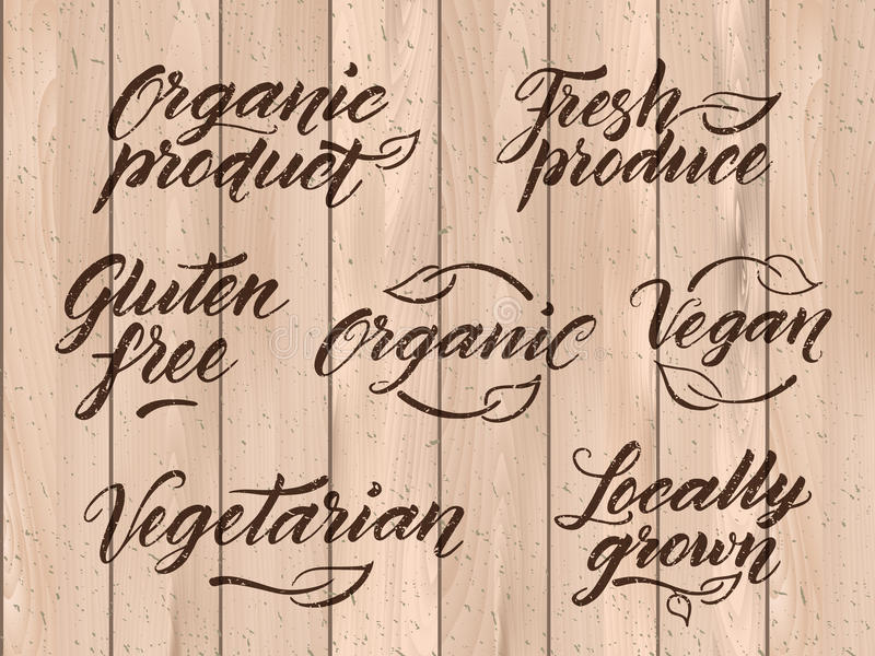 Rétro lettrage sain dénommé de nourriture Label, calibre de logo illustration stock
