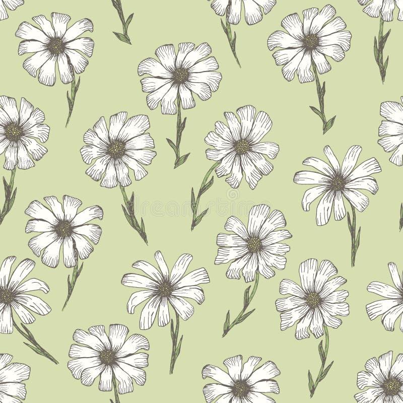 R?tro mod?le avec la fleur blanche de camomille sur le vert illustration libre de droits