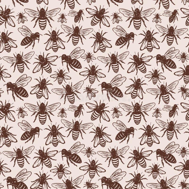 Rétro modèle sans couture dénommé ou fond d'abeille de miel illustration libre de droits