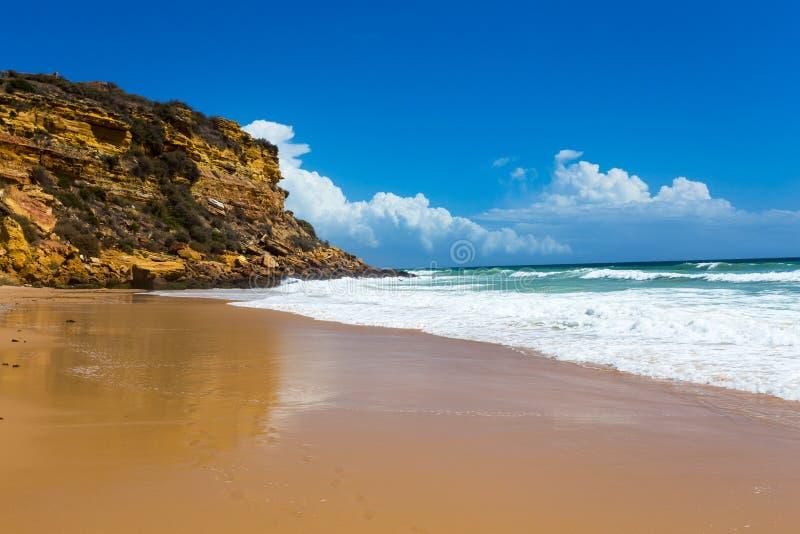 Download Rétro Style De Vague Tropicale De Plage Photo stock - Image du océan, détendez: 56476568