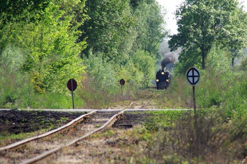 Rétro train de vapeur dans la forêt photos stock