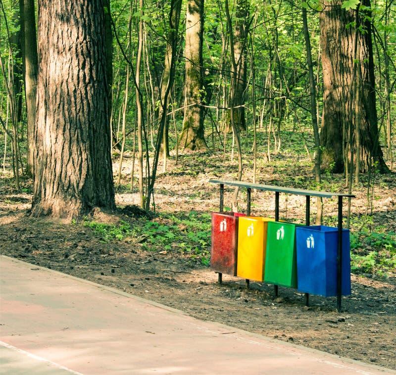 Réutilisez séparément la poubelle photo libre de droits