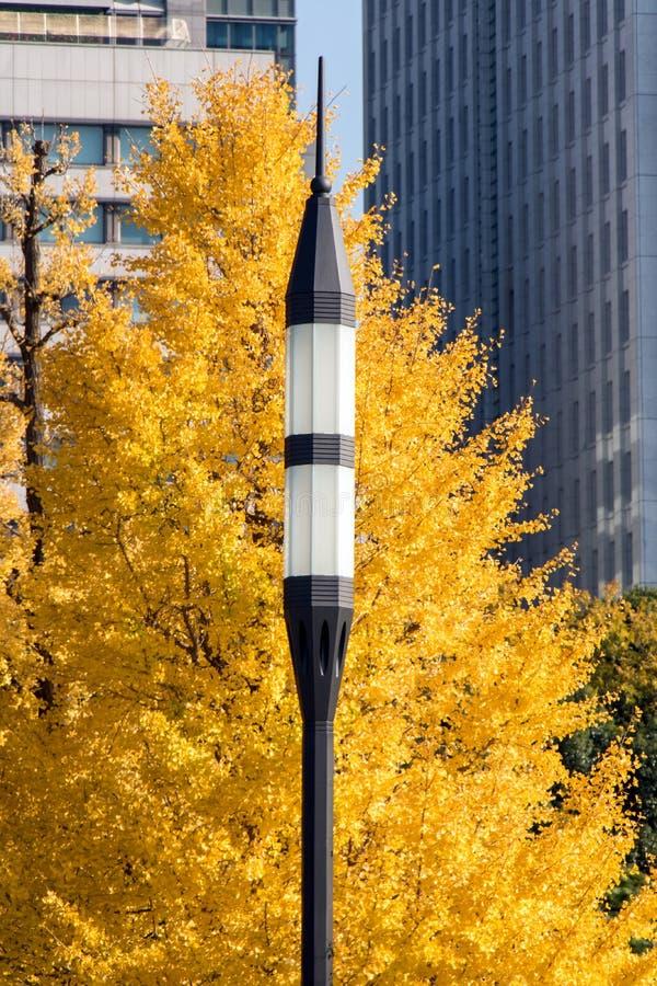 Réverbère avec l'arbre jaune image stock