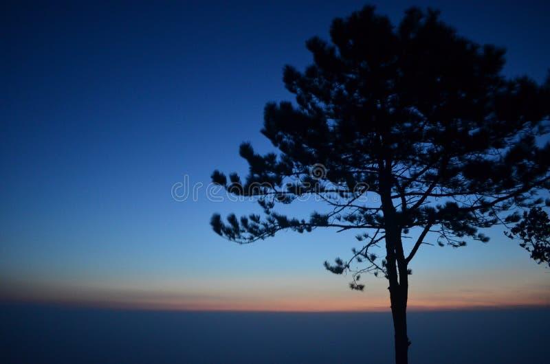 Réverbère contre le ciel bleu images libres de droits
