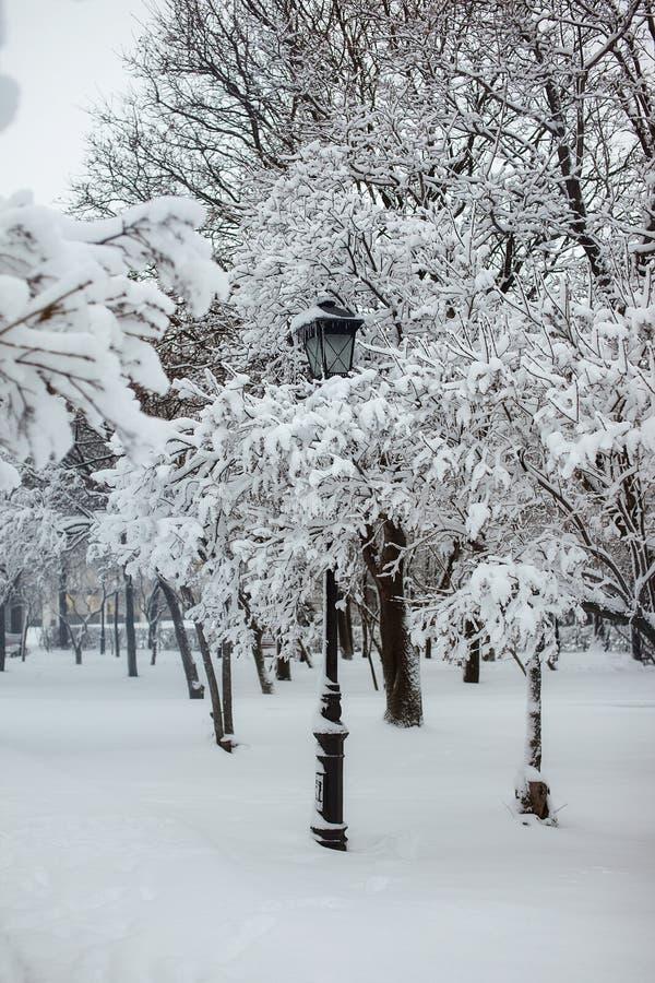 Réverbère en parc de neige photos stock