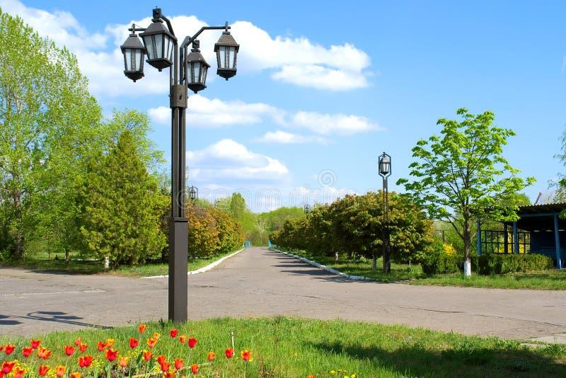 Réverbères, tulipes et route photo stock