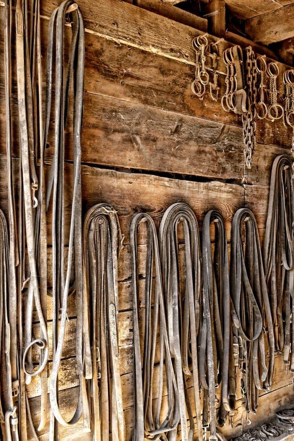 Rênes de harnais de cheval de trait de cru dans la vieille pièce de pointe image libre de droits