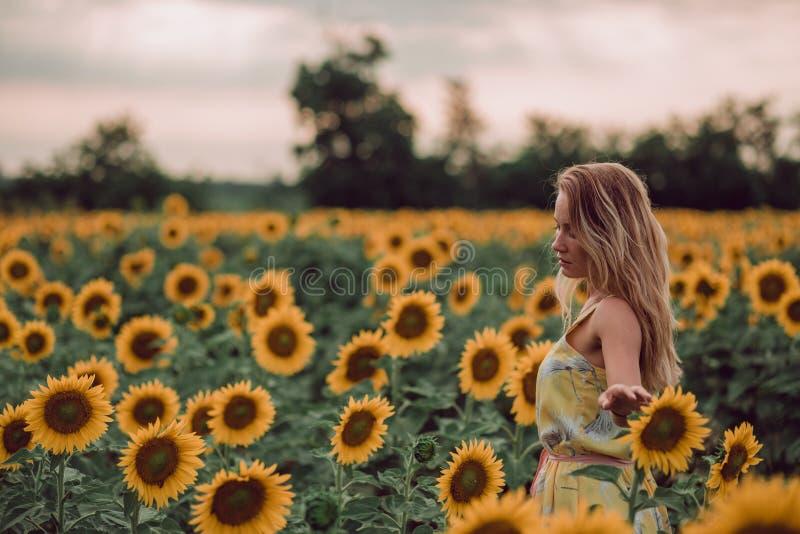 Rêver la jeune femme dans la robe jaune tenant des fleurs avec des mains dans un domaine des tournesols à l'été, vue de son dos R images stock